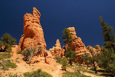 Red Canyon   Utah   US - 0005