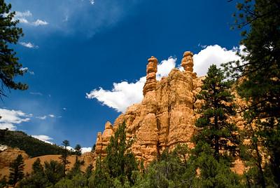 Red Canyon   Utah   US - 0002
