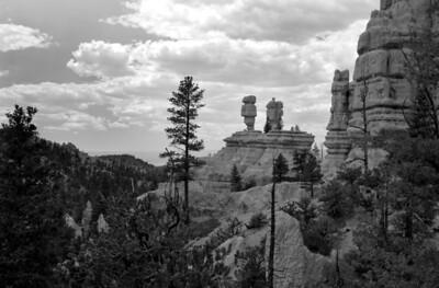 Red Canyon   Utah   US - 0004