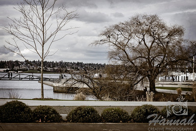 Lake Union Park, Seattle, Washington   © Copyright Hannah Pastrana Prieto