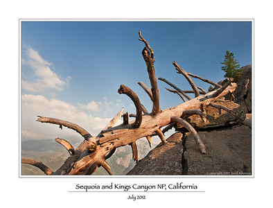 Sequoia and Kings Canyon National Parks 2012