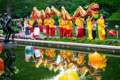 Dancing Dragon - Chinese Culture Days Missouri Botanical Garden