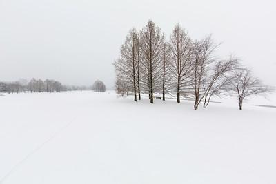 Winter Calm.