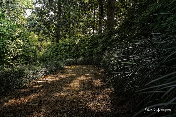 Rienza Gardens - Houston, TX