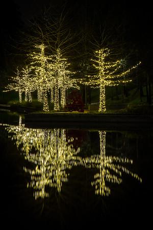 The Waterway Lights