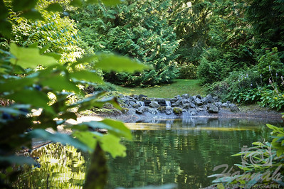 "Mini waterfalls found at 'The Peace Garden' at ""The Grotto"" located in Portland, Oregon  © Copyright Hannah Pastrana Prieto"