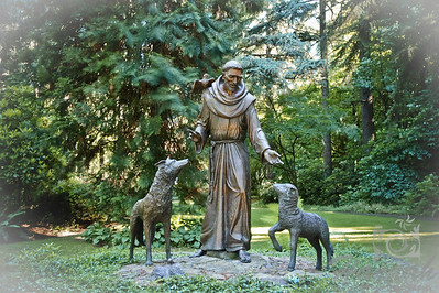 "Statue of St. Francis of Assisi at the botanical gardens of ""The Grotto"" in Portland, Oregon  © Copyright Hannah Pastrana Prieto"