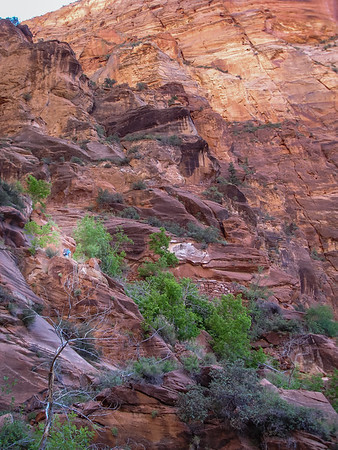 Climb to Angel's Landing - Walter's Wiggles switchbacks.