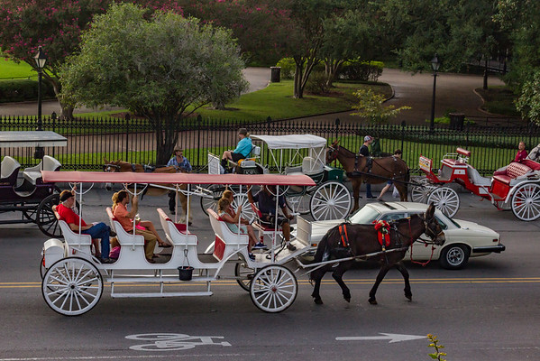 New Orleans, LA - Oh the Carriages You Can Ride!