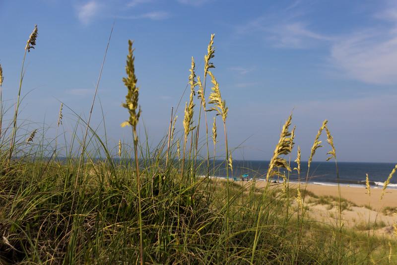 Looking thru the Sand Dunes