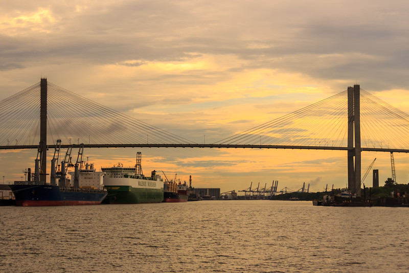 A Bridge in Savannah, GA