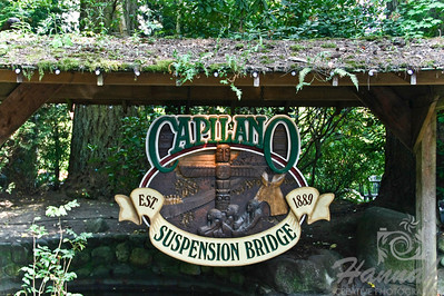 Capilano Suspension Bridge Vancouver, British Columbia, Canada   © Copyright Hannah Pastrana Prieto