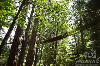Treetops Adventure found inside the Capilano Suspension Bridge Vancouver, British Columbia, Canada   © Copyright Hannah Pastrana Prieto