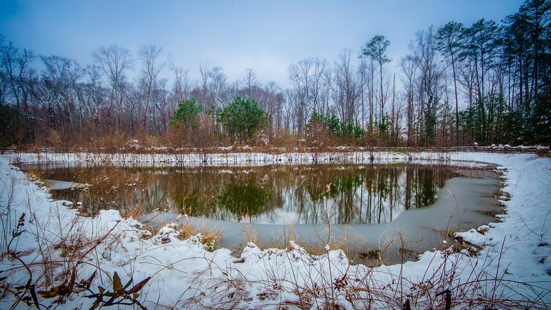 Winter Pond - February 27