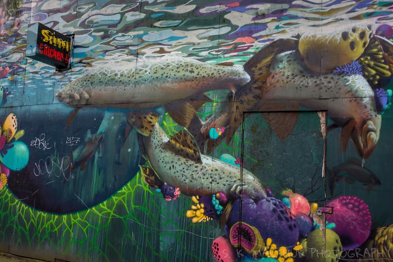 A Seattle Aquarium