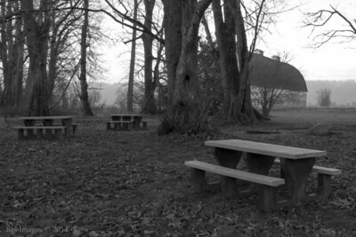 Picnic area near Twin Barns.