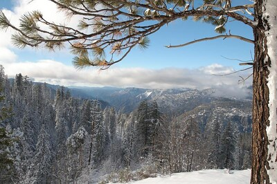 Yosemite  415