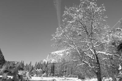 Yosemite  123