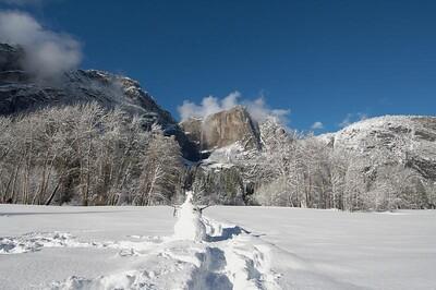 Yosemite  478
