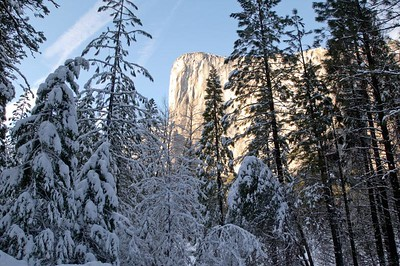 Yosemite  275