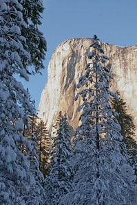 Yosemite  276
