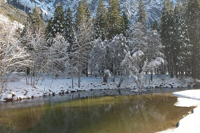 Yosemite  238