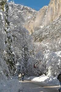 Yosemite  494