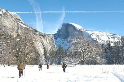 Yosemite  203