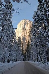 Yosemite  291