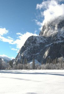 Yosemite  479