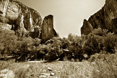 Zion National Park | Utah | US - 0001