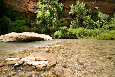 Zion National Park | Utah | US - 0008