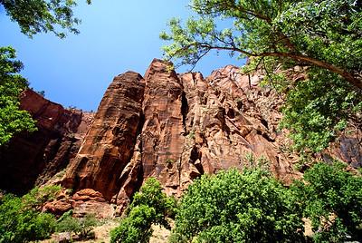 Zion National Park | Utah | US - 0003