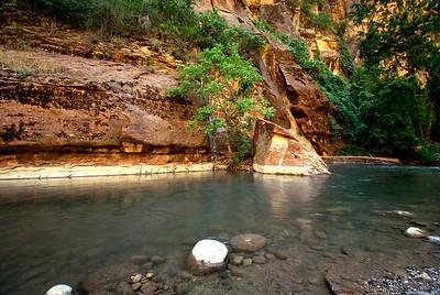 Zion National Park | Utah | US - 0007