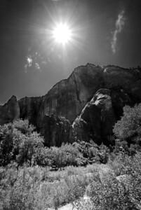 Zion National Park | Utah | US - 0004
