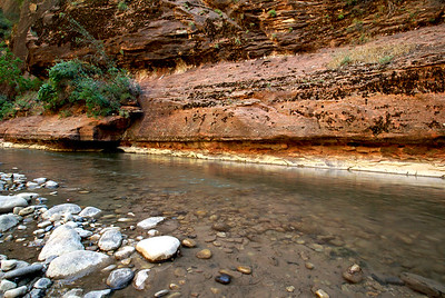 Zion National Park | Utah | US - 0010