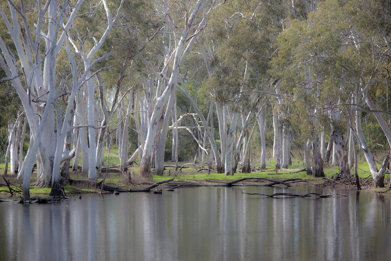 Duck Lagoon, Kangaroo Island, South Australia