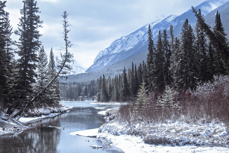 Bow River, Banff National Park, Alberta
