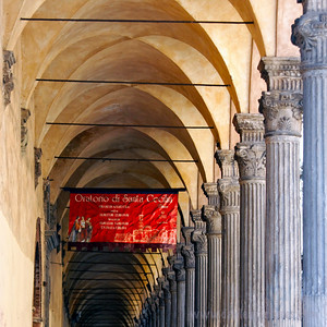 Bologna is famous for its porticos (sidewalk coverings).  A fantastic city to be in on a rainy day.  The porticos also create more camera-friendly lighting during the high-sun hours of the day.