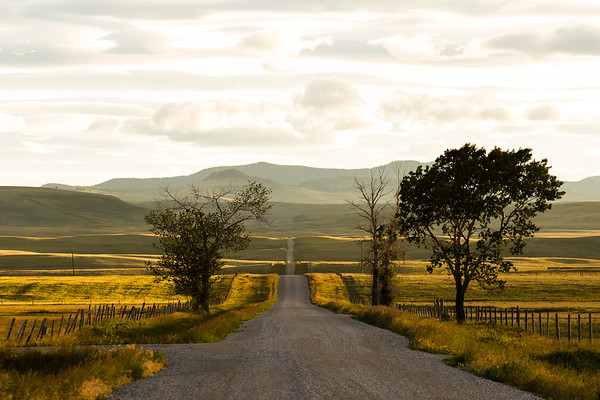 View of the Porcupine Hills at sundown in Alberta, Canada.