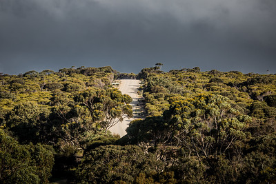Lathami Conservation Park, South Australia
