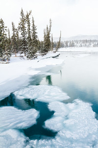 Open water on the Athabasca River in Jasper National Park, Alberta, Canada.