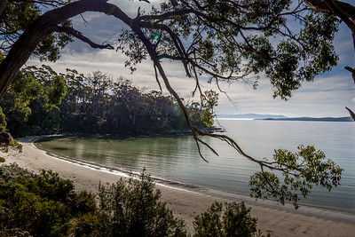 Jetty Beach, Bruny Island, Tasmania
