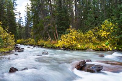 Jonas Creek in Jasper National Park, Alberta, Canada.