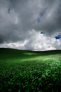 Palouse hills, Washington  Shot with Digital