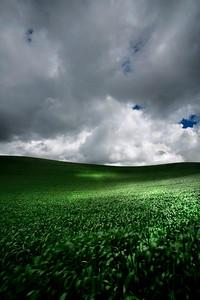 Palouse hills, Washington  Shot with Digital