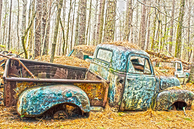 Old truck buried in the pine needles