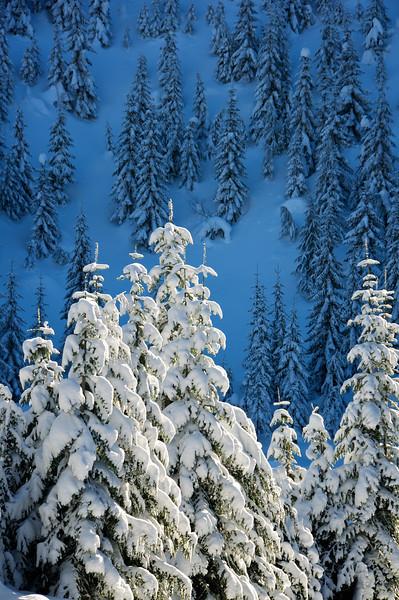 Hyak ski area.  WA.