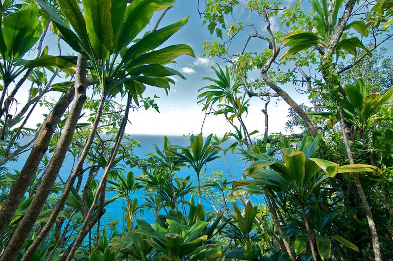 View from Na Pali coast trail