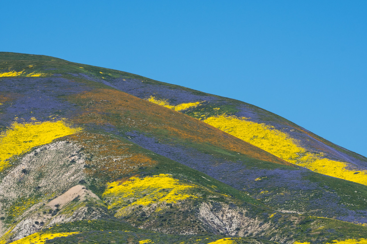 Temblor Range above Carrizo Plain, CA. Spring 2017